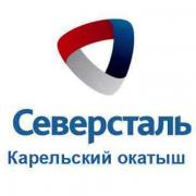 "JSC ""Karelian pellet"" sells unclaimed goods and materials"
